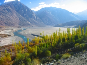 a dash of Greenery to Cold desert..@ Nubra Valley
